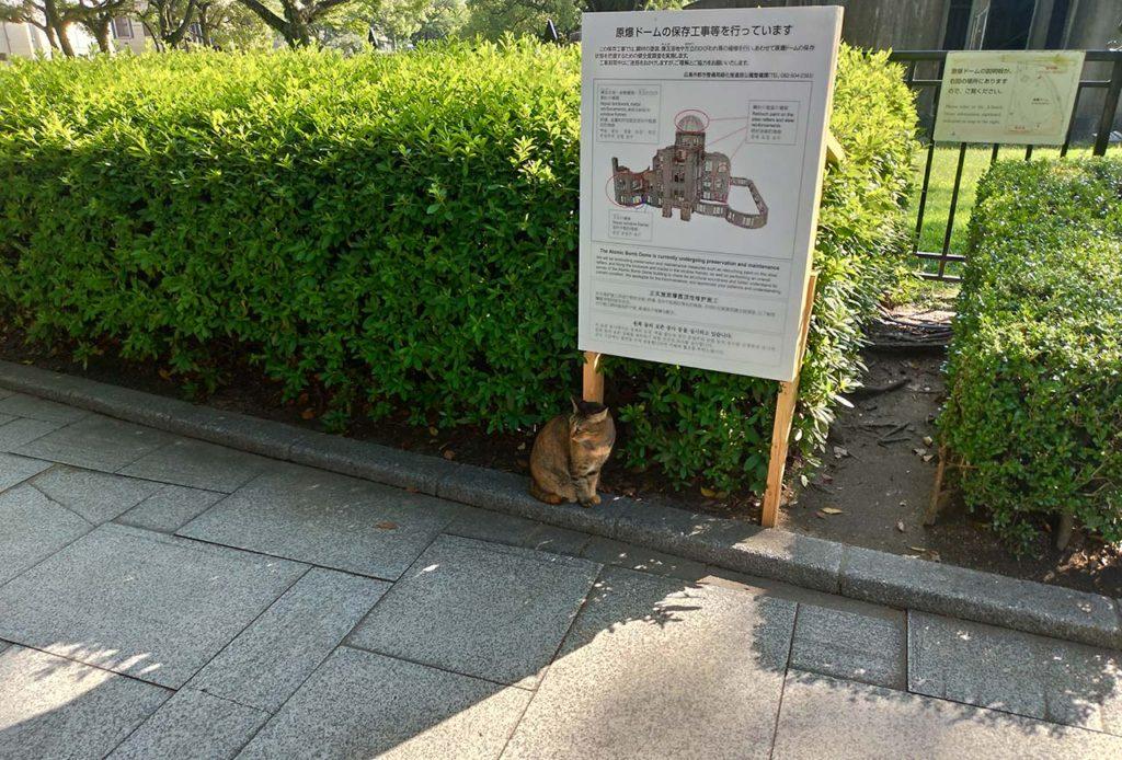 広島 原爆ドームにいた猫