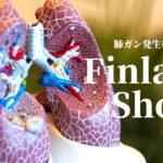 肺ガン発生率が激増した「フィンランドショック」の取り上げ方から考える:合成/天然の解釈間違ってる問題